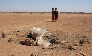 Worst Drought in 60 Years Hitting East Africa