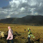 Ethiopia land lease risks displacement : Report