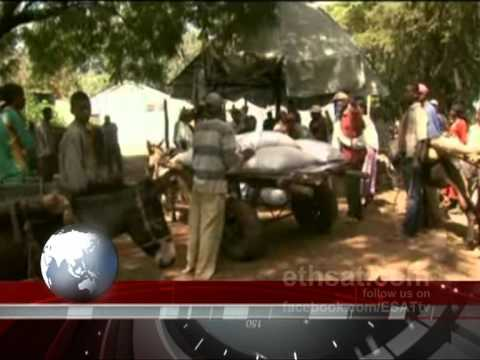ESAT : ዜና – News 13 April 2012 (Ethiopia)