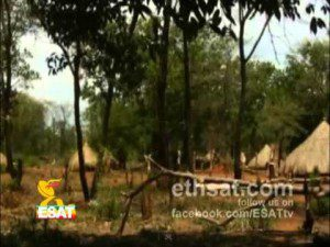 ESAT Weekly News 03 JUNE 2012 Ethiopia