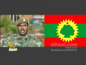 ESAT News DC 22 August 2012 Ethiopia