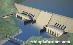 IMF Urges Ethiopia to Slow Nile Dam Project to Protect Economy