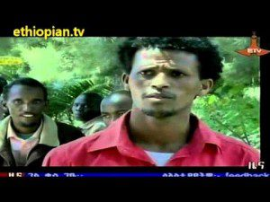 Ethiopian News in Amharic – Wednesday, October 31, 2012