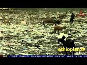 Ethiopian first Waste-to-Energy-Plant to be constructed in Addis