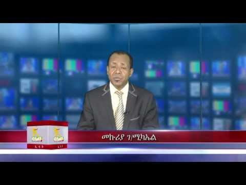 ESAT Daily Ethiopian News DC 25 April 2013