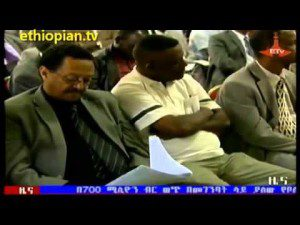 ETV News in Amharic – Monday, May 20, 2013