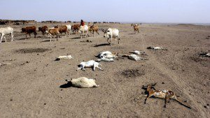 No ordinary year in Ethiopia: It's a 'code red' and must be treated like one – Devex