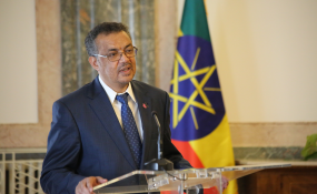 Ethiopia: Addis-Based WHO Board Members Briefed On Dr. Tedros's Bid – AllAfrica.com