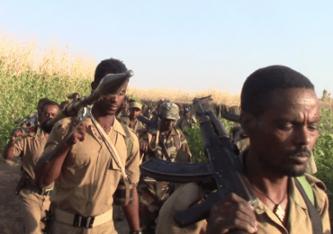 Ethiopia's Peaceful Uprising is Evolving into an Armed Resistance – nazret.com