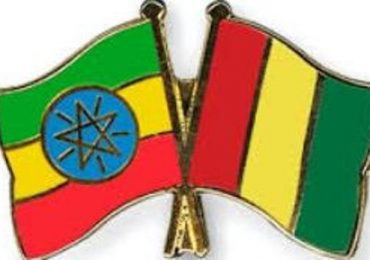 Guinea, Ethiopia agree to boost trade – News Agency of Nigeria (satire) (press release)