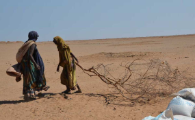 Ethiopia: Building Resilience to Mitigate Drought Effects