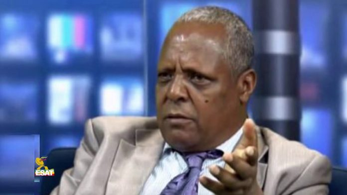 Merera Gudina is the leader of the Oromo Federalist Congress.