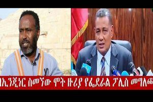 Ethiopian Government announced Engineer Simegnew Bekele GERD Manager committed suicide