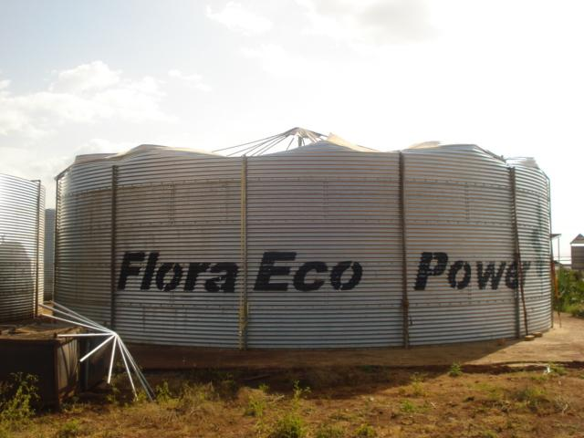 Flora_eco_power_Ethiopia