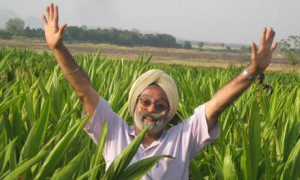 Karmjeet Sekhon, project manager for Indian food company Karuturi Global, with crops in Ethiopia's Gambella province.