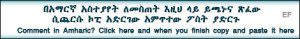 comment-in-amharic