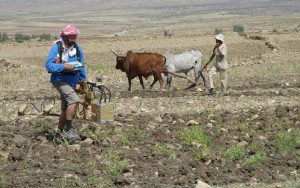Measurements being taken in the Tigray Region with a magnetometer, Photo: © DAI