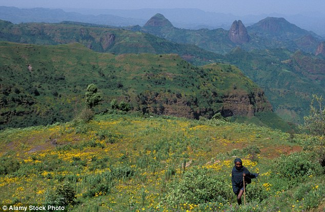 The stunning Simien Mountains are on the northern circuit of tourist attractions