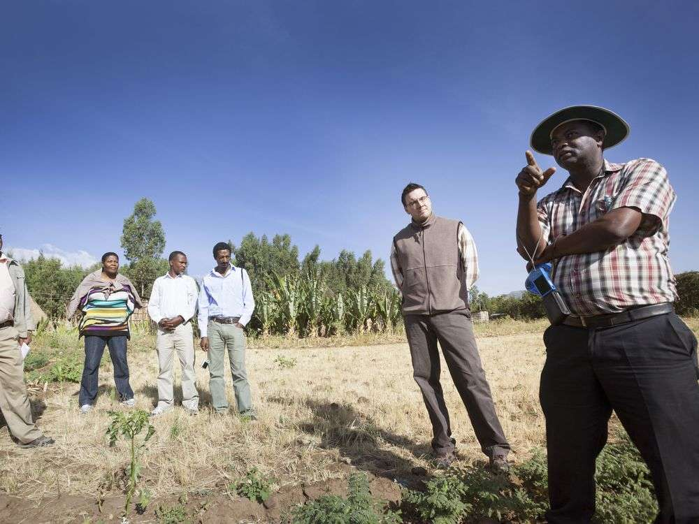 The university of Awassa, Hawassa, is trying to improve the quality of chick peas in Ethiopia, in order to improve food security. Kevin Tiessen, CIFSRF Senior Program Officer from IDRC is second from the right.
