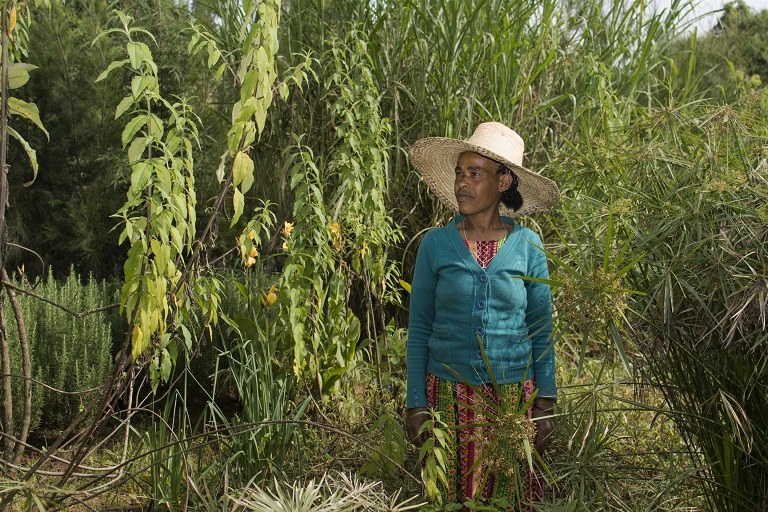 Yetemworq Taye saw her life drastically improve after gaining employment at the Gullele Botanic Garden. Photo by Maheder Haileselassie Tadese