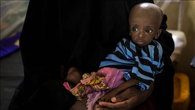 Millions need food aid, Ethiopian report warns